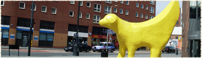 Super Lamb Banana Liverpool